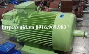 yzr 3 300x184 Động cơ yzr 3 pha dây cuốn công suất 110 Kw giá: 190 triệu
